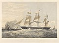 Clipper Ship Orient 1032 Tons - Messrs James Thomson and Co Owners, Thomas Bilbe and Co Builders RMG PY8541.jpg