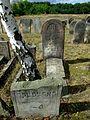 Cmentarz żydowski w Żarkach8.jpg