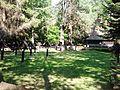 Cmentarz nr 60 na Magurze Małastowskiej (8).jpg