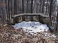 Cmentarz wojskowy z I wojny światowej na wzgórzu Pustki (Łużna) 16.JPG