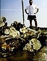 Coast watch (1979) (20651751832).jpg