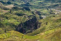 Colca Canyon Puno.jpg