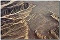 Colibri 2016.jpg