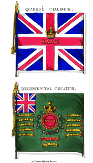 36th (Herefordshire) Regiment of Foot - Colours of the 36th Foot in 1853