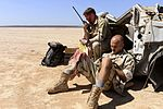 Combat Search and Rescue Exercise 130219-F-HB112-186.jpg