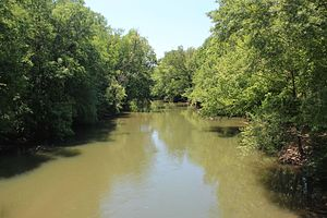 Conasauga River - View of the Conasauga River