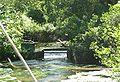 Connetquot-River.jpg