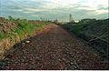 Convention Centre Complex Approach Road Under Construction - Science City - Calcutta 1994-10-17 097.JPG
