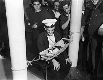 Ship's cat - Convoy sleeps in a hammock aboard HMS Hermione, whilst members of the crew look on