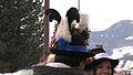 Copricapo tradizionale maschile, Valle dei Mocheni (TN).jpg
