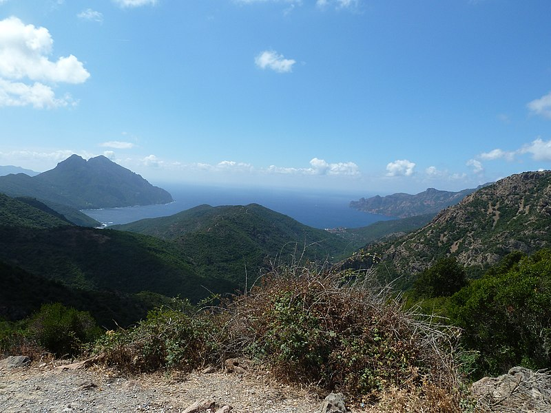 The wonderful nature in Corsica