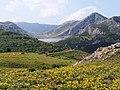 Covadonga Lakes District - 2013.07 - panoramio.jpg