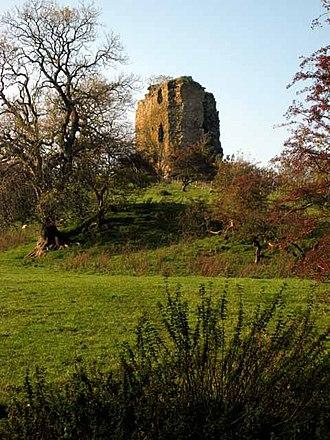 Colmonell - Craigneil Castle, Colmonell