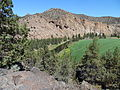 Crooked River near Smith Rock State Park.JPG