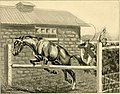 Cross country with horse and hound (1902) (14596527478).jpg