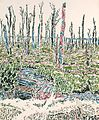 David Milne - Entrance to a German Dug-out in Oppy Wood.jpg