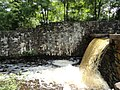 Davidson Mill Pond Park, South Brunswick, New Jersey USA July 15th, 2013 - panoramio (10).jpg