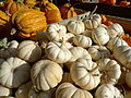 Decorative Gourd Season (Davis Ranch).jpg
