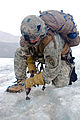 Defense.gov News Photo 110718-A-LP410-334 - U.S. Army 1st Sgt. Randy Hahn with the 4th Brigade 25th Infantry Division clears a spot to set ice screws during a crevasse rescue training.jpg