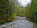 Denny Creek II - panoramio.jpg