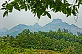 Dhodani,Panvel,Maharashtra - panoramio (13).jpg