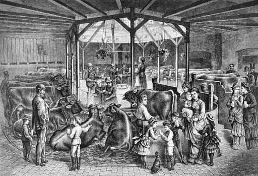 Die Gartenlaube (1883) b 605