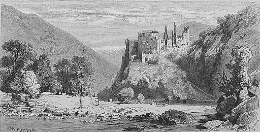 Die Gartenlaube (1885) b 475 2