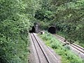 Dinmore Tunnels - geograph.org.uk - 1365609.jpg
