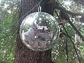 Disco ball in the woods (15129209198).jpg