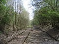 Disused Railway just below Newbury Hill, yet to be finished off as National Cycleway 24 - geograph.org.uk - 168735.jpg