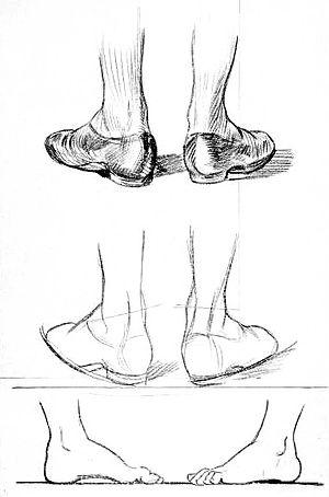 Image Result For Pair Of Socks