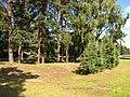 Druvciems summer - panoramio (2).jpg