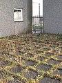Drying green, Greendykes Gardens - geograph.org.uk - 1617581.jpg