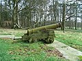 Dunecht Estate Cannon - geograph.org.uk - 1217494.jpg