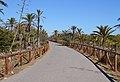 Dunes de Guardamar, camí.JPG