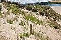 Dunes north of Rock (5392).jpg