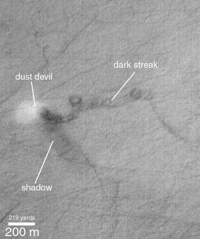 Dust Devil with Labels