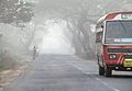 Early morning travel in a Tamilnadu road.jpeg