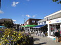 East Cowes York Avenue flowers and shops.JPG