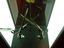 Une paire de ciseaux géants et personnalisés exposés dans une vitrine.