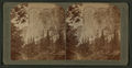 El Capitan, solid granite (3300 ft. high), looking N.W. Yosemite Valley, Cal, by Underwood & Underwood.png