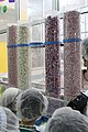 Elite Factory in Nazareth Illit Chewing gum production IMG 2593.JPG