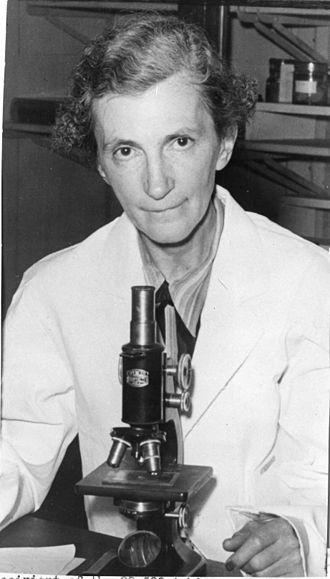 Elizabeth C. Crosby - Elizabeth Caroline Crosby sitting in lab with microscope. This photo was distributed in connection with her 1950 award from the American Association of University of Women.