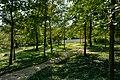 Engischer Garten Kleinwetzdorf Heldenberg 12.jpg