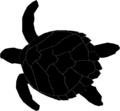 EretmochelysImbricata for templates.png