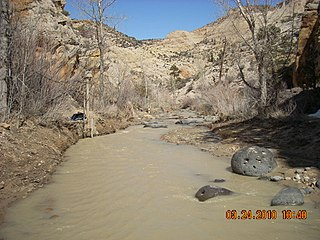 Escalante River river in Garfield and Kane counties in Utah, United States