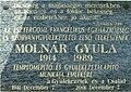 Esztergom Molnár Gyula tábla.JPG