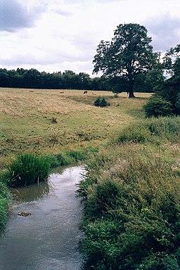 Evenlode river from Catsham bridge - geograph.org.uk - 52851