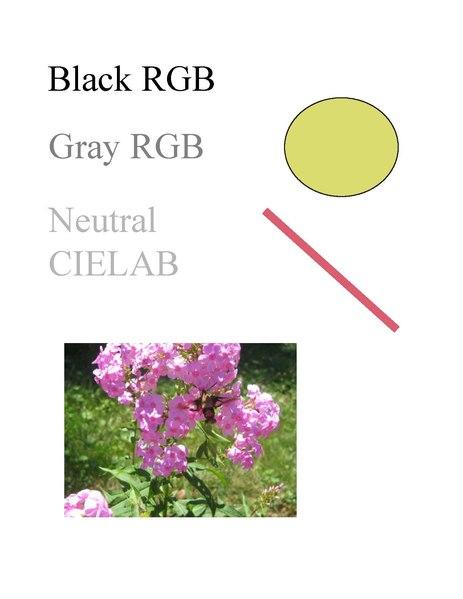 File:Example.pdf