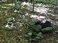 FLT M32 1.4 mi - Bivouac area 50 yards N of trail, fire ring, rock seat - panoramio.jpg